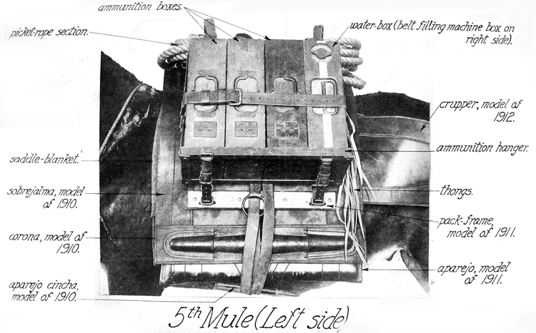 5th Mule (Left Side)