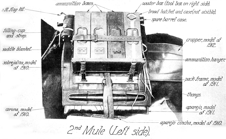 2nd Mule (Left Side)