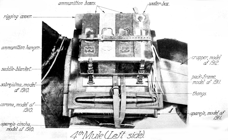 4th Mule (Left Side)