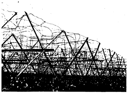 Figure 60.—West Wall barbed-wire obstacle.