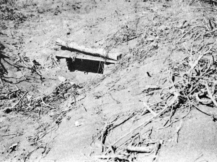 Iwo Jima Naval Gunfire Support