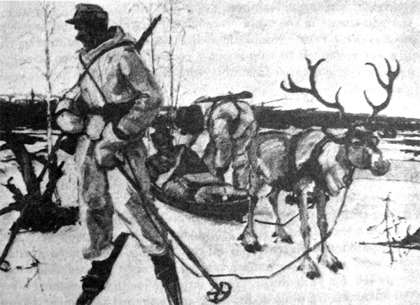 REINDEER used in evacuation of German wounded, Kandalaksha front