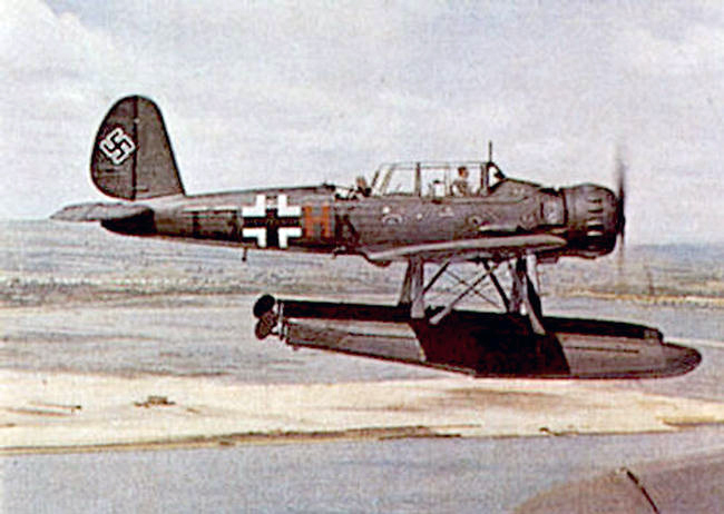 Arado in flight