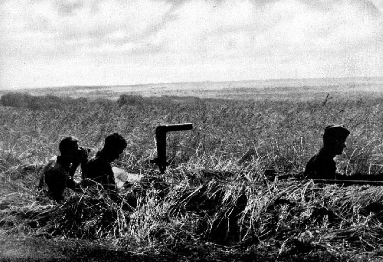 l'artillerie Bessarabia-Ukraine-Crimea-100